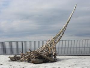 RADEAU du DÉSIR, ART IN SITU, 14 feet x 14 feet x 8 feet, New Brunswick Aquarium and Marine Centre, Shippagan, NB, Canada - 2013
