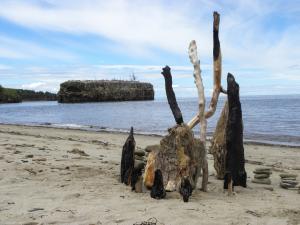 GARDIENS DE L'ÎLE AUX NIDS, charred wood, rocks, Pokeshaw, N.B., Canada - 2014