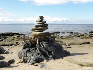 STONE NEST (detail), driftwood, rocks, Grande-Anse, N.B., Canada - 2014