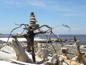 Nature Art, rocks, driftwood, Janeville, NB, Canada - 2015