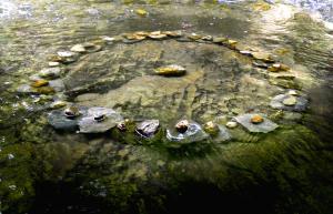 Circle of Stones, rocks, St-Basile, N.B., Canada - 2014
