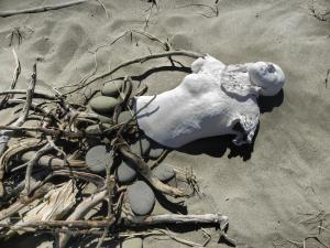Project: SHELL BODIES, ceramic and driftwood, Miscou Island, NB, Canada - 2915