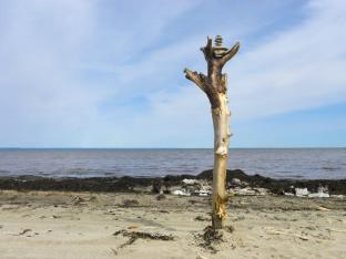 Nature Art, driftwood, rocks, Côte des Guignards, NB, Canada - 2015