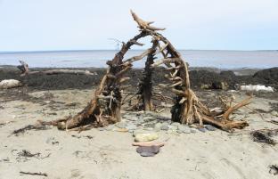 Sea Cairn, driftwood, rocks, Côte des Guignards, NB, Canada - 2015