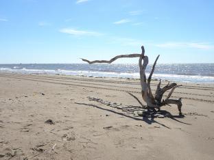 Vanishing Point, Chiasson Beach, Lamèque Island, NB - 2020