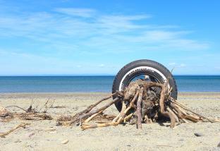 Turned Wood, Miscou Beach, NB - 2020