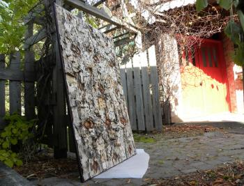 In my backyard at the end of October, applying a protective coating to a birch bark painting.
